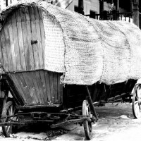 wagon s