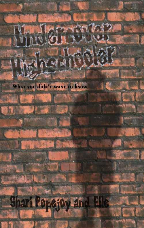 Undercover Highschooler